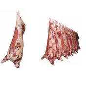 Мясо охлажденное говядина оптом фото