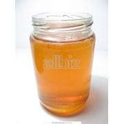 Мёд оптом фото