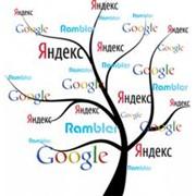 Поисковая оптимизация сайта, Недорого во Львове (Львов, Украина), Цена договорная, выполнение качественное фото