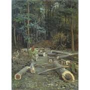 Рубка леса. фото