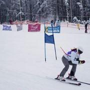 Услуги катков, Гірськолижні види спорту, сноутюб фото