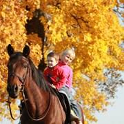 Катание детей на лошадях фото