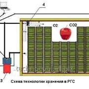 Хранение овощей, фруктов в регулируемой газовой среде (РГС) фото