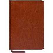 Ежедневник Sarif, недатиров., 160 с., А5, кожзам, коричневый, (Спейс) фото