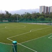 Искусственная трава для спортивных площадок фото
