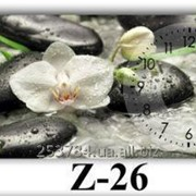 Часы Z-26, 35х80 фото