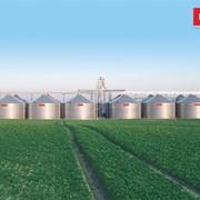 Зернохранилище с плоским дном 1534 фото
