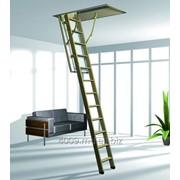 Мансардные лестницы деревянные 80*110*280 код товара 40800000 Scara Mansarda 80*110*280 фото