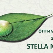 Эндогенная биорезонансная терапия Центр оптимального здоровья STELLA MEDICA фото