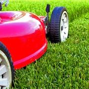 Стрижка газона фото
