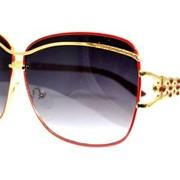 Солнцезащитные очки Advanced View Line AVL405B фото