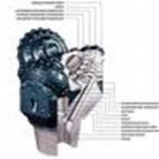 Долота шарошечные для бурения скважин 76,93,112,120,132, 139,7, 146, 190, 215,9, 295,3, 393,7 С-ЦВ,С-ГВ, Т-ЦВ, СЗ-ГВ, СЗ-ГАУ, ТЗ-ГАУ и др типорозмеров фото