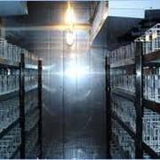 Аренда холодильных модулей с камерами различных фото