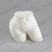 Манекен формы: бедра женские пластиковые, Б-301(бел) фото