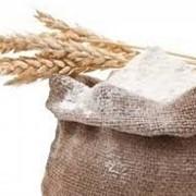 Мука пшеничная в/с,1 сорт), сеянка ,обдирная фото