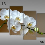 Картина модульная М-13, размер 60х120 фото