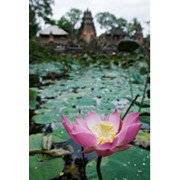 VIP - Туры : Бали (Индонезия) фото