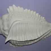 Раковины (ракушки) и другие изделия из художественной керамики фото
