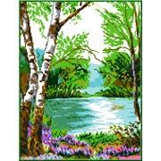 Рисунок-схема У реки КТК - 4006 фото