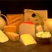 Голландский сыр, Сыр Королевский, сыр Радомер, сыр Магнат, сыр Гауда фото