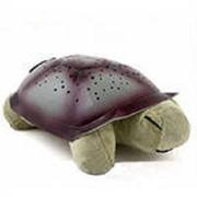 Ночник черепаха фото