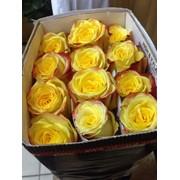 Цветочный магазин Бьюти Флер в Актау фото