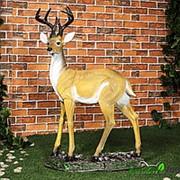 Фигура Олень с большими рогами фото