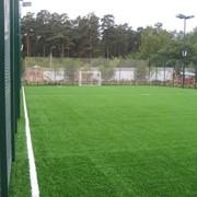 Аренда футбольного поля фото