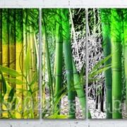 Модульна картина на полотні Бамбук код КМ100200(200)-245 фото