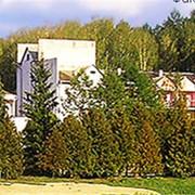 Санаторий Остреч-оздоровительный комплекс. фото