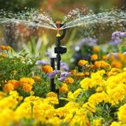 Система дождевого полива Расцветайка фото