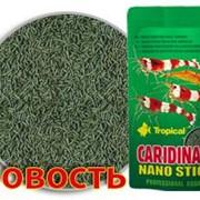 Корм Tropical Caridina Nano Sticks 10 г фото