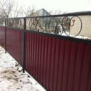 Заборы.Ворота.Калитки. фото