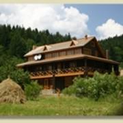 Отдых в уголоке Буковинских Карпат фото