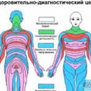 Диагностика организма фото