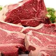 Баранина мясо фото
