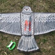 Воздушный змей Ястреб фото