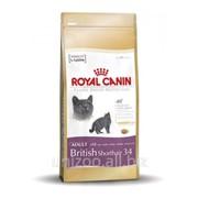 Сухой корм для кошек Royal Canin British Shorthair 34 4 кг фото