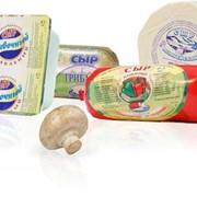 Сыр плавленый фото