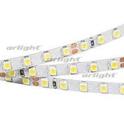 Лента RT 2-5000 24V White5500 5mm 2x (3528, 600 LED, LUX) фото