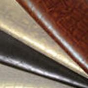 Пресс для кожевенного пр-ва марки MOSTARDINI 2007 года в хорошем состоянии фото