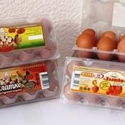 Яйцо куриное С-1, 6 штук в упаковке фото