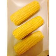 Кукуруза в початке фото