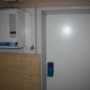 Сдаю в аренду морозильные камеры в Минске фото