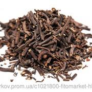 Корень Морозника кавказского 100 грамм (Helleborus caucasicus) фото