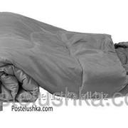 Спальный мешок KingCamp Oasis 250 L Серый фото