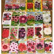 Пакетированные семена цветов фото