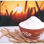 Мука пшеничная первого сорта в Шымкенте фото