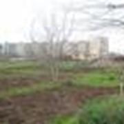 Земли жилищного строительства Одесса. Земельный участок в Одессе для многоэтажной жилой застройки. фото