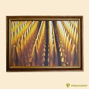 Картина в ассортименте 40х60 (5113) фото